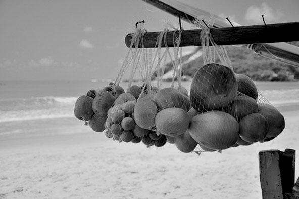 Vente de mangues sur la plage