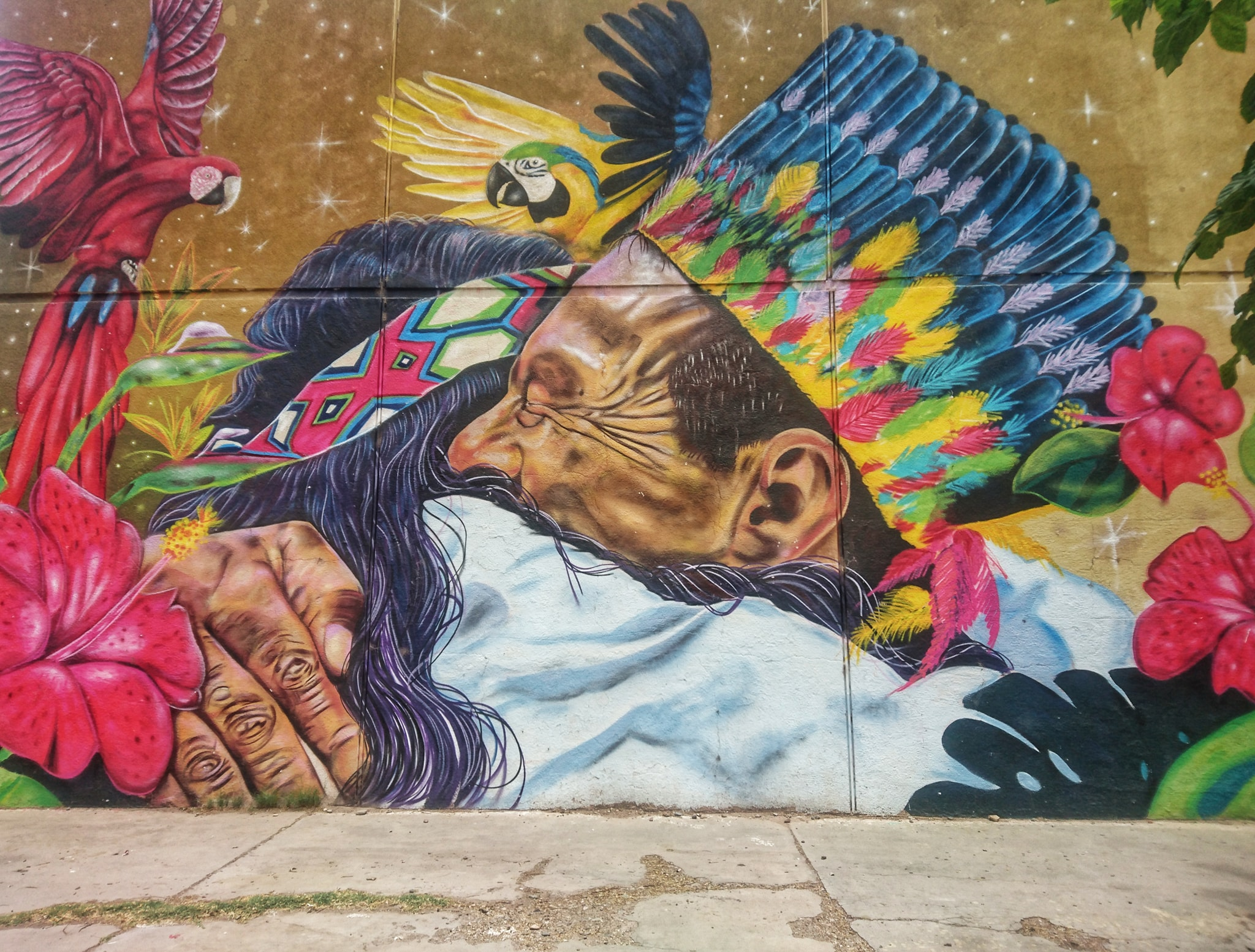 Mural Street Art, San Juan Capital, Argentine