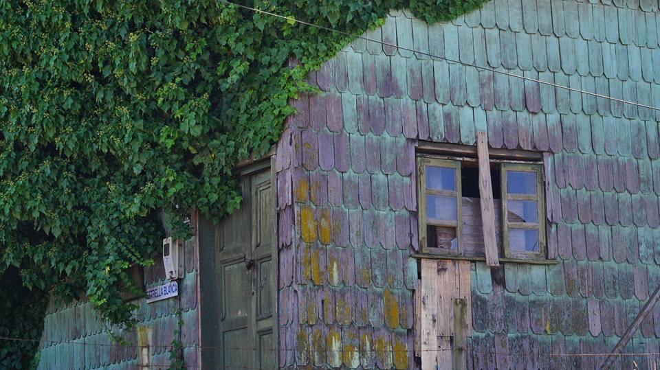 Detail d'une maison en alerce, Puerto Montt, Chili
